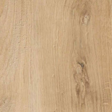 Irish oak, Slotex